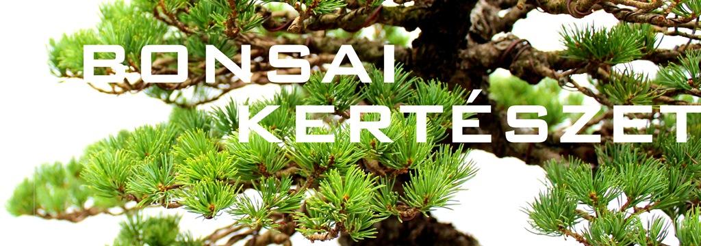 http://www.bonsaistudio.hu/help/h-109/Bonsai-kerteszet-erden/